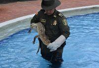 Noticias de Cúcuta: En un sitio turístico el grupo de Policía ambienta...