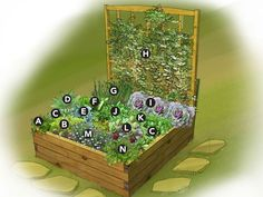 This small-space garden plan features a 4'x4' raised bed jammed with fresh-tasting vegetables and herbs to fill your kitchen pantry.