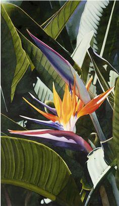 """Bird of Paradise II"" by Kathleen Alexander View #NCook Birds of Paradise ""The MIX Gallery"" http://www.artofncook.com/"