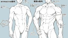 #Male #Female #Reference #muscle #Torso #abdominal #pectoral #Japanese Body Reference Drawing, Guy Drawing, Drawing Base, Anatomy Reference, Art Reference Poses, Drawing People, Female Reference, Drawing Muscles, Hand Reference