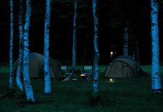 Nightfall of the camping