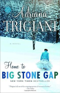 "Home to Big Stone Gap: A Novel (Big Stone Gap Novels) Such an interesting and romantic series of books--start with the first one ""Big Stone Gap"""