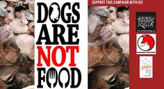 DOGS ARE NOT FOOD!    Bali, known as the 'Island of Gods', is not as beautiful as it seems. Tourists visit, enjoy the beaches, peaceful culture and cheap stay but underneath there is a dark industry of animal theft, barbaric slaughter and profit! The Dog Meat Trade!    We need the global community to be aware this is happening and gather support to close RW Restaurants (Dog Meat Restaurants) with the help of the local community, police force and the local government.    SOME SIMPLE FACTS: …