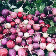 gorgeous radishes - more gorgeous veggie inspiration on jojotastic.com