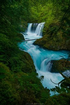 """""""This image is of the beautiful aquamarine colors of Spirit Falls wrapped in the lush green canopy of Spring. Spirit Falls is located on the Washington side of the Columbia Gorge.""""~ Erwin Buske Photography"""