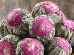 Blooming tea balls