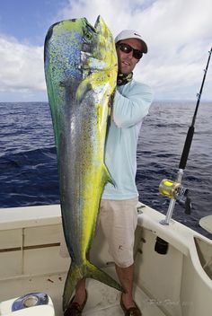 Dolphin (Mahi Mahi or Dorado).  Hey, I caught one of these (not quite that big, though.