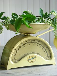 great old scale Yellow Cream, Mellow Yellow, Old Kitchen, Vintage Kitchen, Vintage Decor, Retro Vintage, Honeysuckle Cottage, Objets Antiques, Old Scales