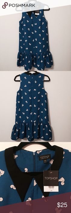 TOPSHOP Squirrel print dress A new squirrel print dress with a black collar, a cute and quirky piece! Has a dropped waist and contrast collar. Concealed back zip. Length 85cm. 100% Polyester. Topshop Dresses