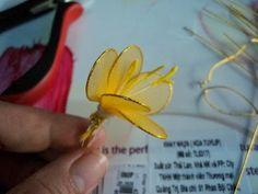 Flowers of apricot nylon