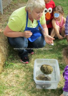 Sink or Float Experiment Using Lava Rock & Pumice (from For the Children)