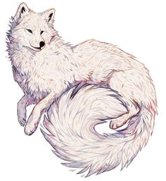 giulialibard Instagram photos and videos Animal drawings Fox art Cute animal drawings