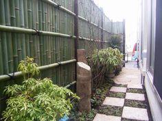 A side-yard garden// small space garden// Japanese style garden
