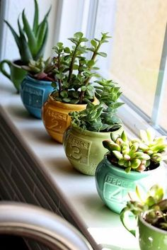 succulents also are a great way to liven up a sunny window sill. (I have a succulent but I also start my seedlings for my outside herb garden on the window sill and transplant them later. Love the green year round! Cacti And Succulents, Planting Succulents, Planting Flowers, Succulent Ideas, Succulent Containers, Growing Succulents, Succulent Care, Air Plants, Garden Plants