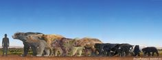 "Bears by SameerPrehistorica on DeviantArt: ""Arctotherium Angustidens(Extinct), Pleistocene Polar Bear(Extinct), Arctodus Simus(Extinct), Cave Bear(Extinct), Polar Bear, Kodiak Bear, Grizzly Bear, American Black Bear, Asian Black Bear, Spectacled Bear, Sloth Bear, Panda Bear and Sun Bear."""