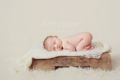 Kelly Brown - Little Pieces Photography