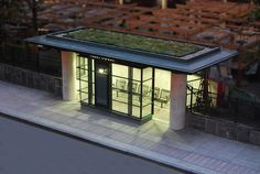 green roof bus stop!