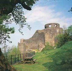 Dinefwr Park & Castle