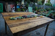 """Growth"" A great way to get plants into your life. A table made for looking at.    Far Out Flora"