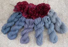 Wool - Tribulations of Hand Spinning and Herbal Dying: A Trial of Hollyhock Petal Dye