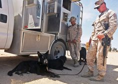 Marines with 1st Law Enforcement Battalion let their military working dogs rest in the shade during Large Scale Exercise-1, Javelin Thrust 2012, July 11.