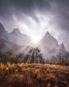 A moody day in Zion National Park, Utah. [OC] by: benstrauss Fantasy Landscape, Winter Landscape, Mountain Landscape, Desert Landscape, Cool Landscapes, Beautiful Landscapes, Zion National Park, National Parks, Amazing Photography