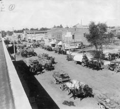 """A street scene in Monte Vista during potato shipping time. Twenty horse-drawn wagons loaded with potatoes are parked on a dirt street in Monte Vista (Rio Grande County), Colorado. Shows commercial buildings and parked cars. Signs on buildings read: """"Spearhead Plug Tobacco"""" """"Millinery"""" """"Rooms"""" """"Dry Goods"""" """"J.C. Bushinger Clothing Hats Furnishings & Shoes, EST. 1891.""""  Date  [between 1910 and 1920?]   :: History Colorado"""