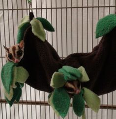 instructions to make sugar glider toys - Google Search