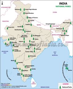 Natural vegetation of india india and india map india physical map outline size map of dams in india thecheapjerseys Images