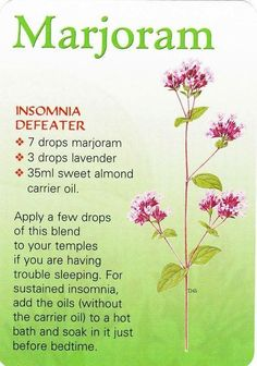 Caitlin's Sleep Oil Blend Natural remedies - insomnia and disturbed sleep: Majoram oil These are some cool Healing Oils, Aromatherapy Oils, Healing Herbs, Essential Oil Perfume, Doterra Essential Oils, Essential Oil Blends, Doterra Blends, Young Living Oils, Young Living Essential Oils