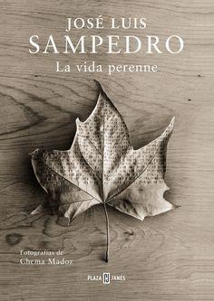 La vida perenne (2015), José Luis Sampedro. Un sorprendente viaje a través de la filosofía vital de José Luis Sampedro acompañado por las sugestivas imágenes del prestigioso fotógrafo Chema Madoz.