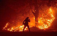 Calor desata ola de incendios en EEUU