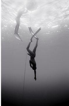 Beginning Freedive (B-242)