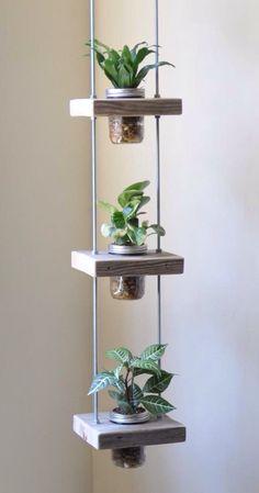 Pequeños jardines verticales. Cómo hacer uno con materiales reciclados