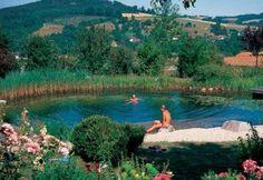 un altro esempio di piscina senza cloro
