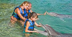 Xcaret Plus with Dolphins