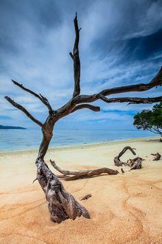 My footsteps lead to a pollution-free place, a beautiful and peaceful. A Hidden Paradise at Gili Trawangan, Lombok, West Nusa Tenggara< Indonesia Bali Lombok, Places Around The World, Around The Worlds, Beautiful World, Beautiful Places, Gili Air, Wanderlust, Gili Trawangan, Gili Island