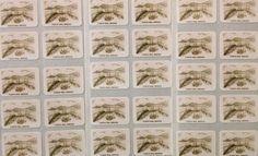 30 x High Quality Plastic Coated Stickers - FREE P&P - Forth Rail Bridge, Scotland Scrapbook Stickers, Worlds Largest, Scotland, Bridge, Scrapbooking, Plastic, Cards, Free, Ebay