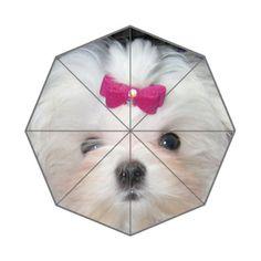maltese lovely dog wallpaper Custom Foldable Umbrella Honest Kind http://www.amazon.com/dp/B00Z9RDBEG/ref=cm_sw_r_pi_dp_C0XAwb0G3AA6Y