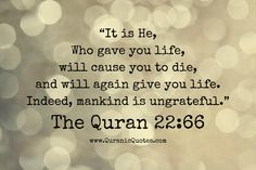 The Qur'an 22:66 (Surah al-Haj) It is He, Who gave you life, will cause you to die, and will again give you life. Indeed, mankind is ungrateful.