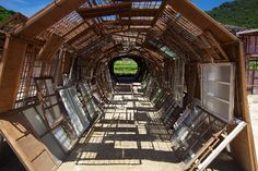 Image result for wood tunnel artist