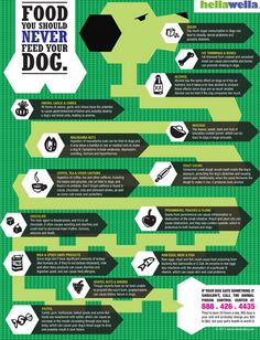 foods to never feed your dog #infographic