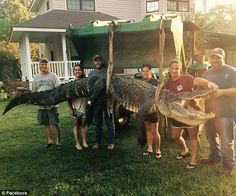Wienke, her husband, and four friends said they spent 20 hours hunting before…