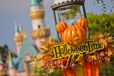 One year, I will go to Disneyland(orWorld) for each major Holiday that the decorate for.