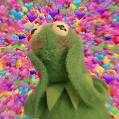 Frog Wallpaper, Cartoon Wallpaper Iphone, Cute Cartoon Wallpapers, Disney Wallpaper, Cute Wallpaper Backgrounds, Cute Cat Memes, Cute Love Memes, Meme Chat, Sapo Meme