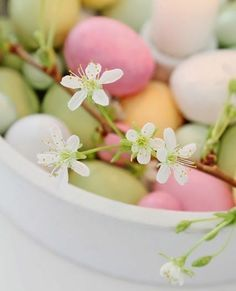 pastel colored eggs