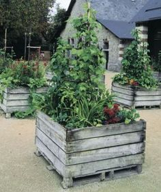 Building raised beds from pallet materials.  Great idea for recycling!