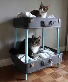 Vintage Suitcase Bunk Pet Bed - Blues and Whites - Upcycled Matching Suitcases - Eco Friendly