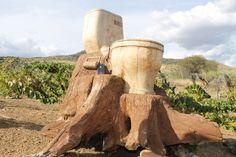 Talla en madera de sanitario, viejo tronco en tamaño real; Tallas en Madera - Página web de artesanojoselujan