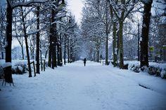 Bajo nieve by sca13, via Flickr